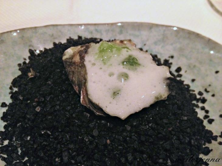 aubergine_03