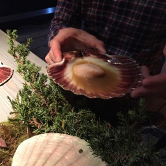 "Scallop ""i skalet ur elden"" cooked over juniper branches, Fäviken Magasinet, Sweden"